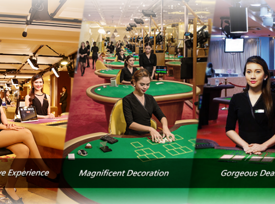 Enjoy Exclusive Facilities Of Gaming And Play Casino Online